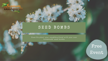 DIY Seed Bomb Workshop