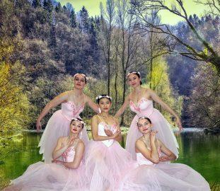 Anne Samson School of Ballet 50th Jubilee