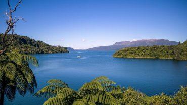 Lake Tarawera Spring Fair
